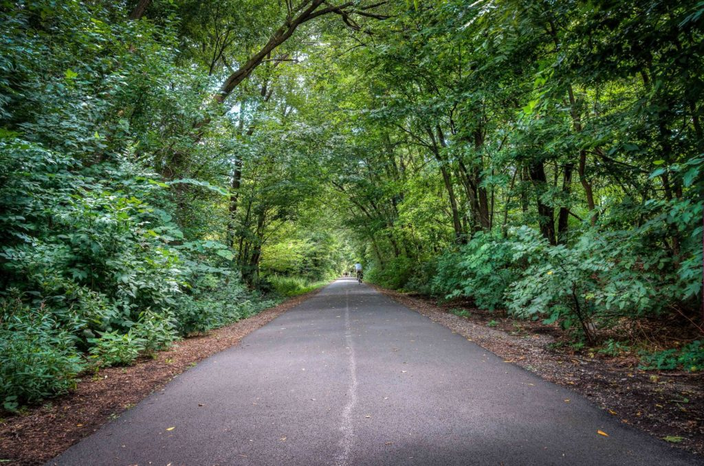 Wide, paved trail surrounded by lush green trails