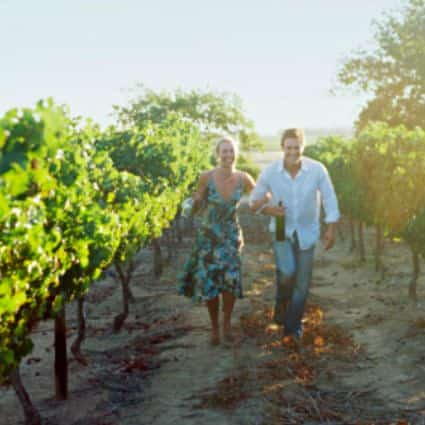 Man in white shirt holding arms with woman in blue floral sundress walking between rows of grapevines