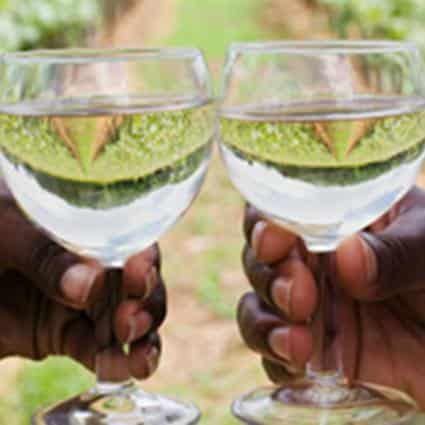 Close-up view of two hands holding clear wine glasses filled with clear liquid with vineyard in the background