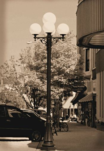 Black and white photo of downtown street with flowering trees and street lamps along the sidewalk